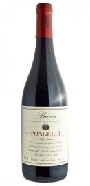 Rosso Piceno Tenuta Pongelli F.Lli Bucci 2013