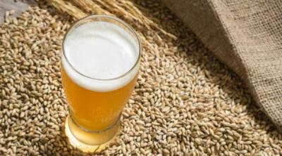 Beer: anecdotes, production, types and much more to know
