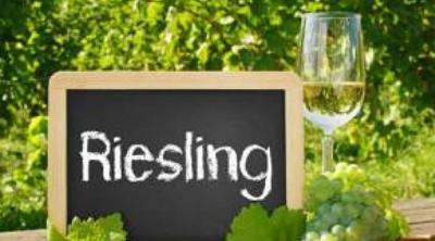 Rieslings and the great 2019 vintage